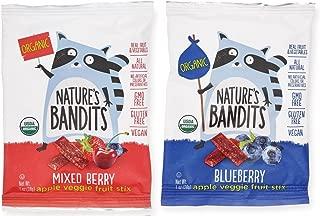 Nature's Bandits Organic Fruit & Veggie Stix - Variety (Blueberry & Mixed Berry), 1 Box of 16 (1.0 Ounce) Bags - Gluten Free, Vegan, Kosher