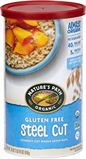 Nature's Path Gluten Free Steel Cut Oatmeal, Healthy, Organic & Sugar Free, Gluten-Free, 1 Canister, 30 Ounces (Pack of 6)