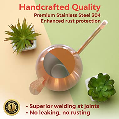 Fair Summer Red Copper Watering Can for Indoor Plants and Succulents