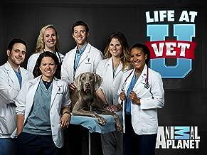 Best life at vet u animal planet Reviews