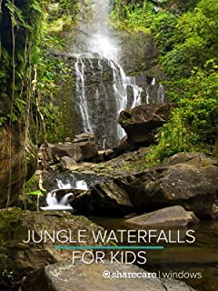 Jungle Waterfalls for Kids