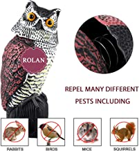 Rolan Owl Decoy Model Used to Scare Birds Away - Realistic Eyes & Waterproof Shape Owls for Bird Control