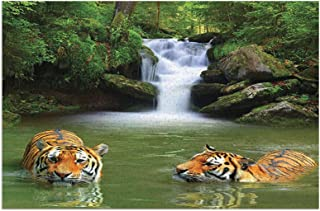 Tiger Siberian Tigers In Water Waterfall Pool Woodland Swimming Asian Natural Theme Image Tiger Green Peru White Mats Non ...