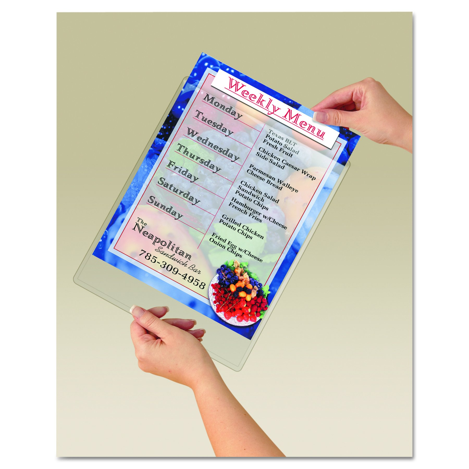 9x11 Display Pocket Removable Fasteners Clear Plastic Qty:12