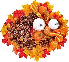 Colcolo Conjunto de 218 unidades de folhas de bordo artificiais de outono, abóboras de colheita, pinha, bolotas e folhas d...