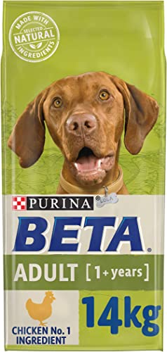 BETA Adult Dry Dog Food Chicken, 14kg product image