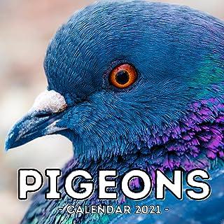 Pigeons Calendar 2021: 16-Month Calendar, Cute Gift Idea For Pigeon Lovers Women & Men