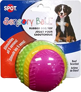 "Ethical Pets Sensory Ball Dog Toy, 2.5"", Assorted colors (603022)"