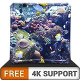 aquarium HD de beauté aquatique gratuit - décorez votre chambre avec un magnifique aquarium de vie marine sur votre téléviseur HDR 4K 8K et des dispositifs d'incendie comme fond d'écran, décoration po
