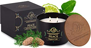 Luxury Scented Soy 3 Wick Candle for Stress Relief & Relaxation High Intensity Aromatherapy (Peace - Ocean ...