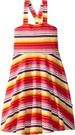 Multicolored Stripe 1