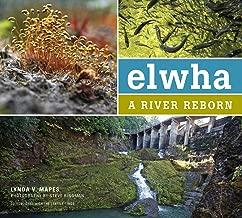 Best river reborn Reviews