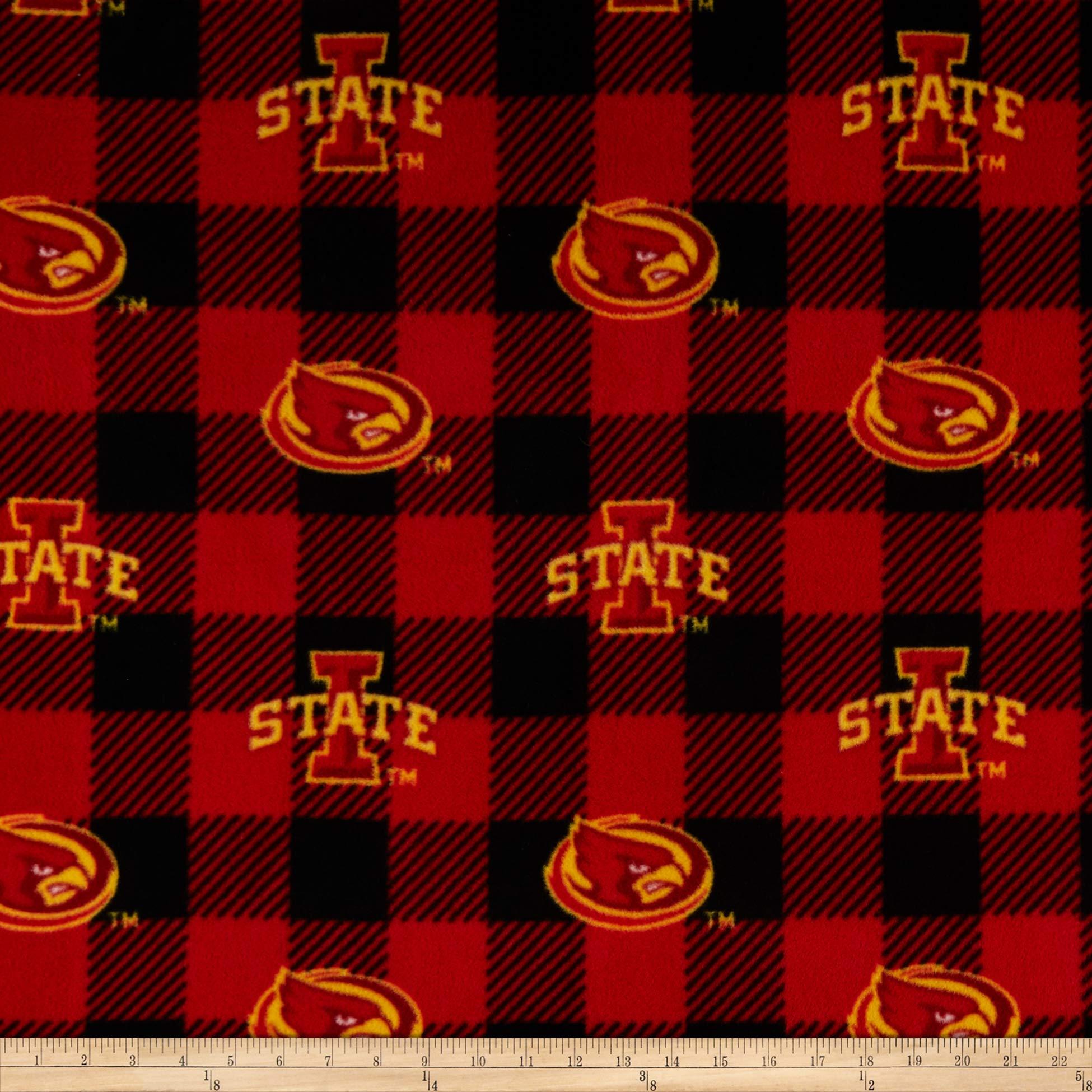 SYKEL University of Iowa Hawkeyes Scenic Blanket Stadium Scene-University of Iowa Hawkeyes Fleece Blanket