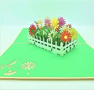BC Worldwide Ltd carta pop-up 3D daisy giardino fiorito, compleanno, festa della mamma, anniversario di matrimonio, congra...