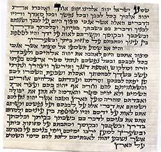 ProShofar Kosher Mezuzah Scroll from Israel - Klaf Mezuza Parchment (2.8