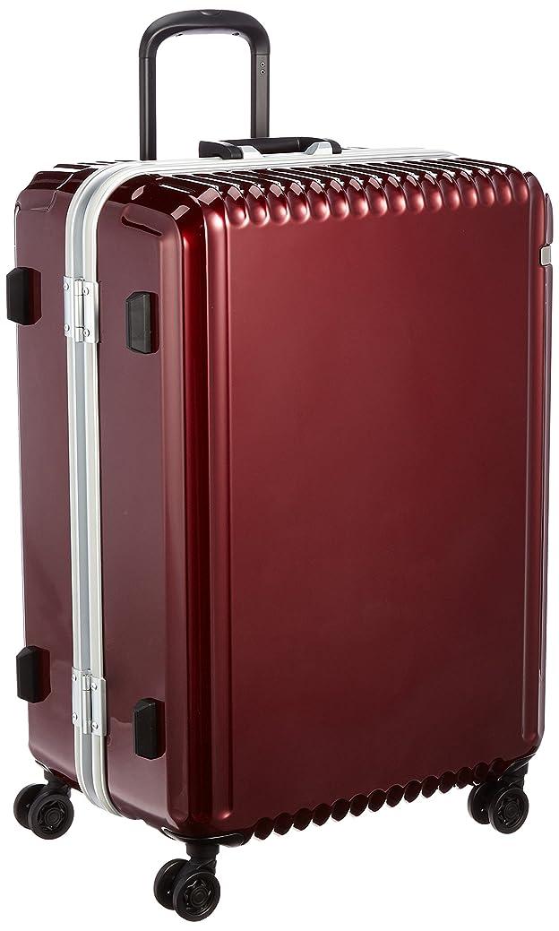 六パッド嘆く[エース] スーツケース パリセイドF 96L 5.1kg 無料預入受託サイズ 05573 65 cm