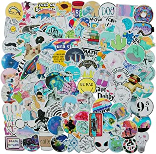 100 PCS Mixed Different Funny Internet Memes and Celebrity Stickers Network Popular Meme Sticker for Kids Laptop Skateboard Toy Stickers (Internet Memes)