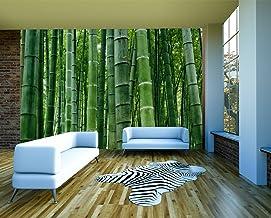 Tapisserie Photo Bambou 308 x 220 cm Laine papier peint Salon Chambre Bureau Couloir d/écoration Peinture murale d/écor mural moderne 9097010a 100/% FABRIQU/É EN ALLEMAGNE