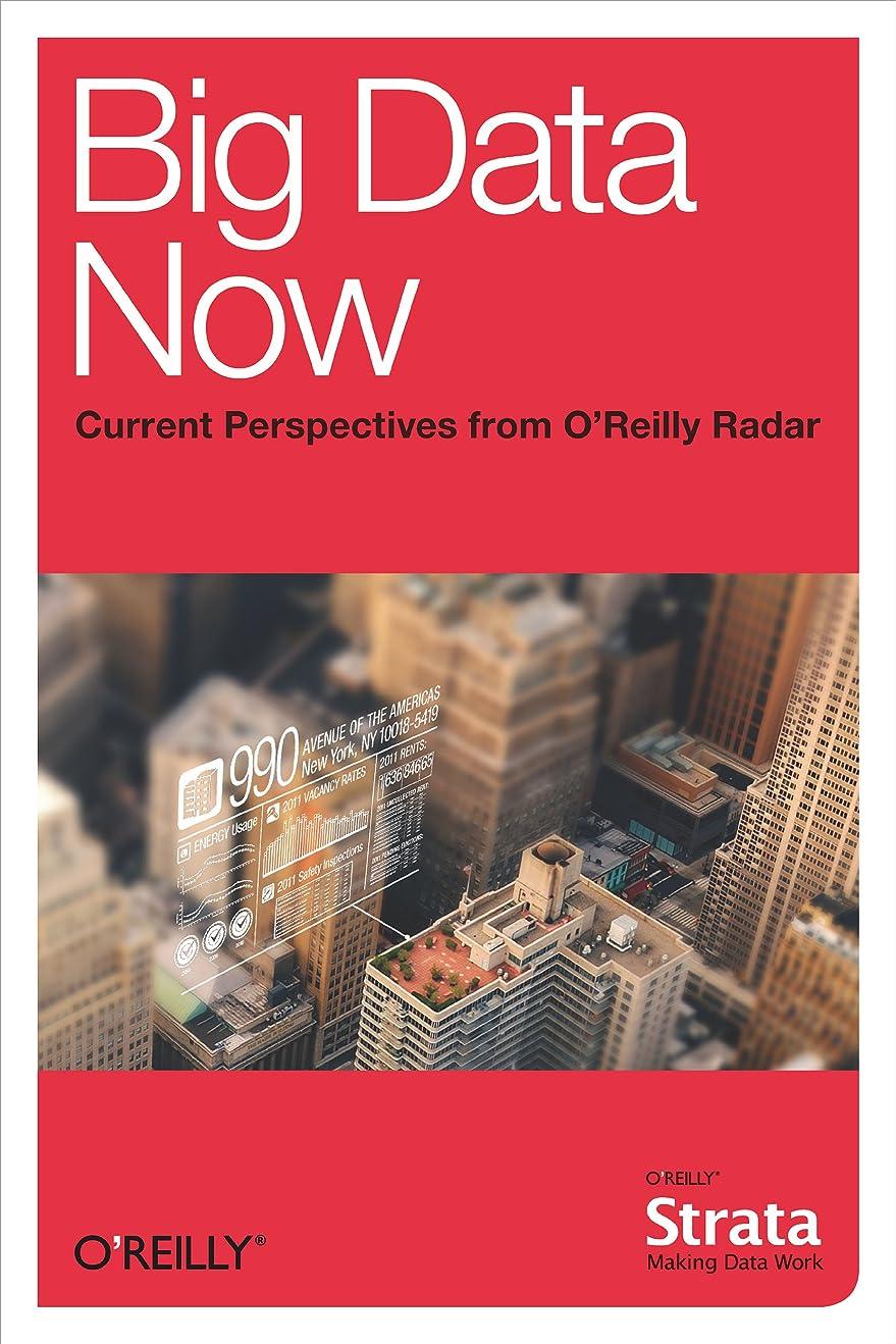 朝パラシュート不定Big Data Now: Current Perspectives from O'Reilly Radar (English Edition)