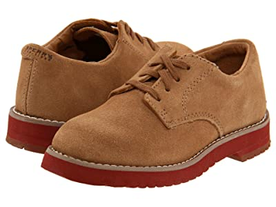 Sperry Kids Tevin (Toddler/Little Kid) (New Dirty Buck) Boys Shoes