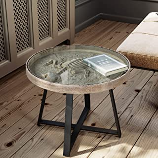 COSIEST Fossil Display Coffee Table, Glass Top w Metal...