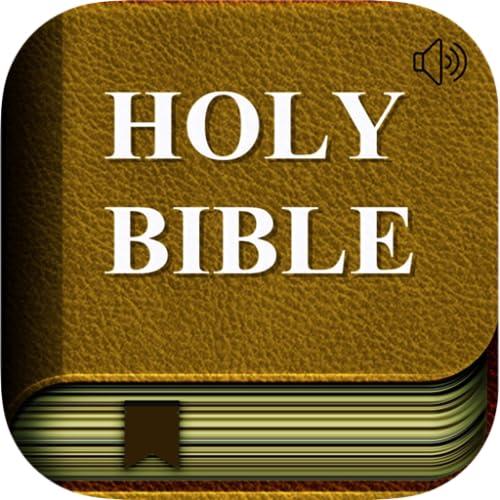 Bibel (audio)