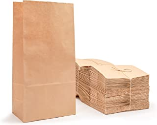 Best lunch bags brown paper Reviews