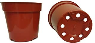 20 Standard Plastic Pots for Plants, Cuttings & Seedlings, 4-Inch, Terracotta
