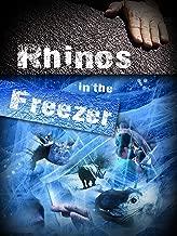 Rhinos in the Freezer