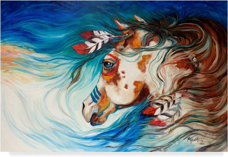 Trademark Fine Art ALI34651C1219GG The Drifter Indian War Horse by Marcia Baldwin Wall Decor, 12 x19 , Multicolor