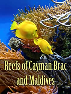 Reefs of Cayman Brac and Maldives