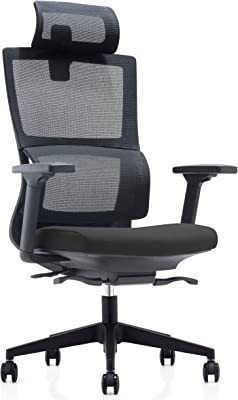GXXGE Ergonomic Mesh Office Chair, High Back Desk Chair - Adjustable Headrest with Flip-Up Arms, Tilt Function, Lumbar Support and PU Wheels, Swivel Computer Task Chair