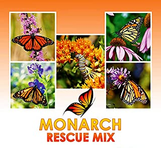 Monarch Butterfly Rescue Wildflower Seeds Bulk + 8 Bonus Gardening eBooks + Open-Pollinated Wildflower Seed Packet, Non-GMO, No Fillers, Annual, Perennial Milkweed Seeds for Monarch Butterfly