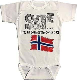 UGFGF-S3 Norway Flag USA Flag Retro Newborn Baby Long Sleeve Bodysuit Bodysuits