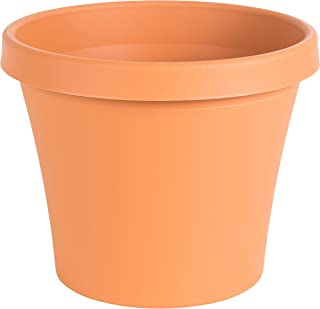 Best cheap large clay pots Reviews