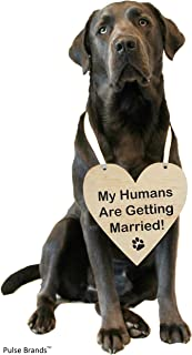 Best save the date signs for dogs Reviews