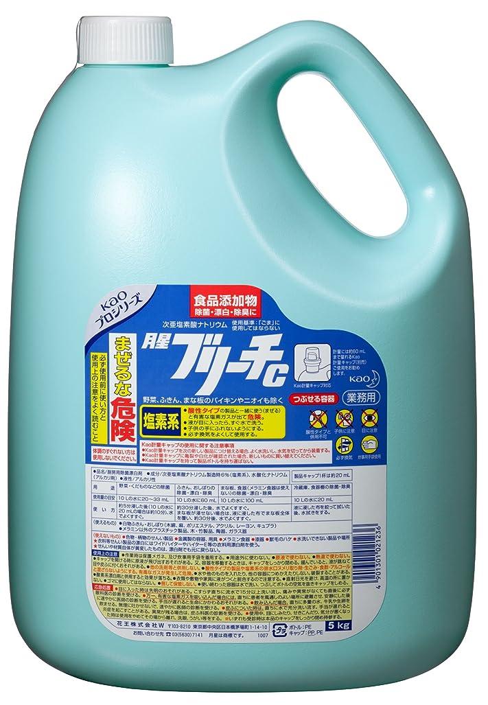 二層一致するポケット【業務用 塩素系除菌漂白剤(食品添加物)】月星ブリーチC 5kg(花王プロフェッショナルシリーズ)