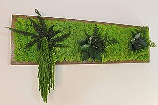Quadro Vegetale - 70 x 20 cm - Verde 15 - Edera-Felce-Amaranthus-Capelvenere-CORNICE NOCE SCURO- Orizzontale.