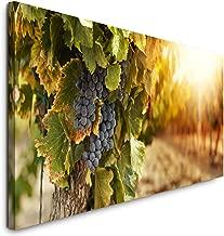 Weintrauben Weinberg Panorama Format Bild auf Leinwand Wandbild Poster