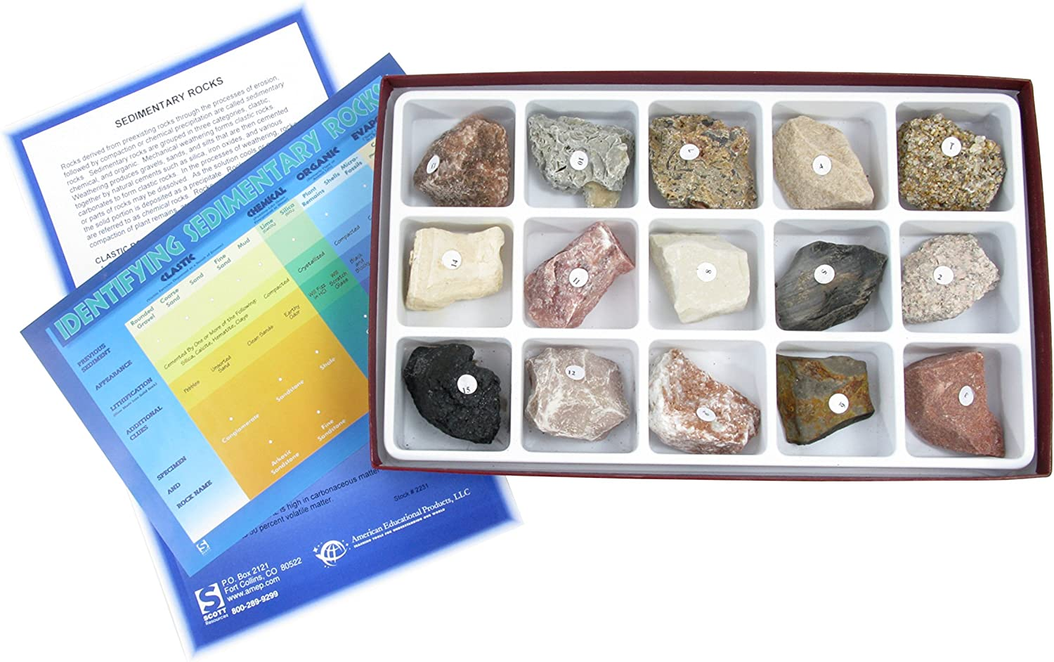 American Educational 15 Piece Sedimentary Rock Collection