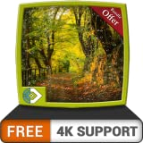 FREE Green Rainy Land HD - Enjoy the beautiful scenery on your HDR 4K TV, 8K TV and Fire Devices as a wallpaper, Decoration for Christmas Holidays, Theme for Mediation & Peace