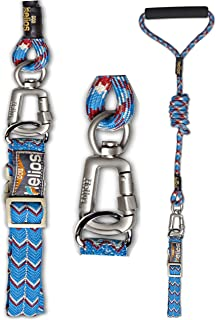 DOGHELIOS 'Dura-Tough' Easy Tension 3M Reflective Adjustable Multi-swivel Pet Dog Leash and Collar, Small, Blue