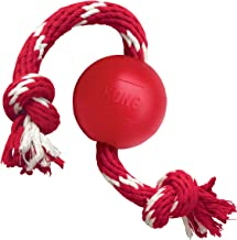 KONG Ball w/Rope Dog Toy