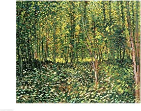 Trees and Undergrowth, 1887 by Vincent Van Gogh Art Print, 43 x 32 inches