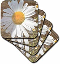 3dRose cst_29465_2 White Daisy Flower Wood Design Flowers Flower Photography-Soft Coasters, Set of 8