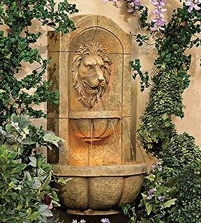 Best large lion head fountain Reviews