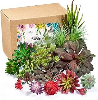 ZHOUBIN Artificial Succulent Plants - Fake Succulents-Mini Bulk Feaux Succulent Plants Face Succulents for Decoration (18 Pcs)