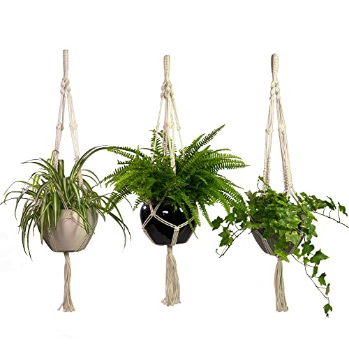 photograph about Free Printable Macrame Plant Hanger Patterns named Macrame Plant Hangers: