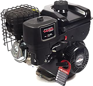 Briggs and Stratton 19N132-0051-F1 1450 Series Engine