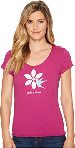 Life is Good Hummingbird Flower Smooth Scoop Tee